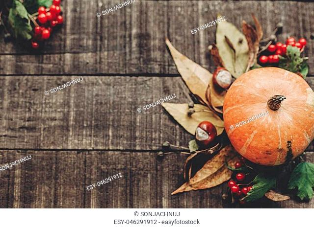 beautiful pumpkin with leaves and berries on rustic wooden background, top view. space for text. thanksgiving or halloween concept greeting card