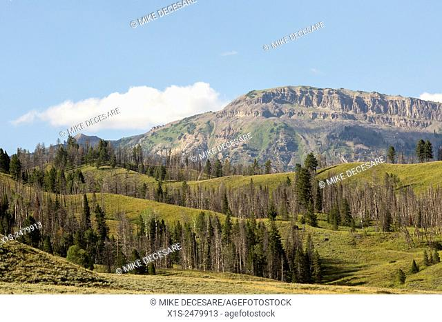 High country landscapes in Wyoming with unspoiled lands