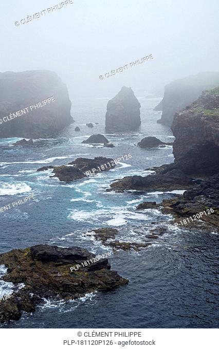 Sea stacks and sea cliffs in mist during stormy weather at Eshaness / Esha Ness, peninsula in Northmavine, Mainland, Shetland Islands, Scotland, UK