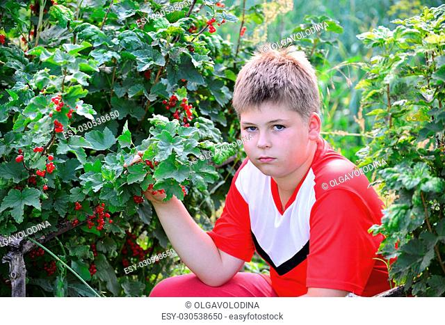 Teenage boy sitting near a red currant in the garden