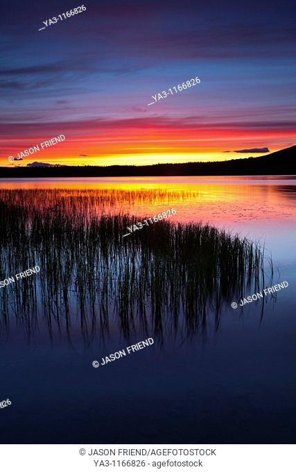 Scotland, Scottish Highlands, Cairngorms National Park  Summer sunset over Loch Morlich near Aviemore