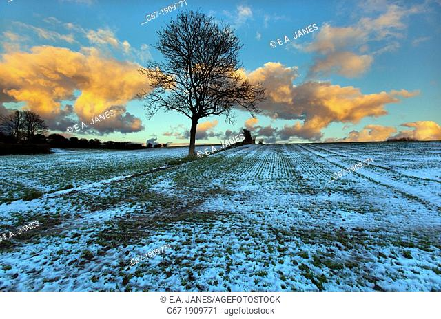 Hungry hill Northrepps and arable fields North Norfolk Winter