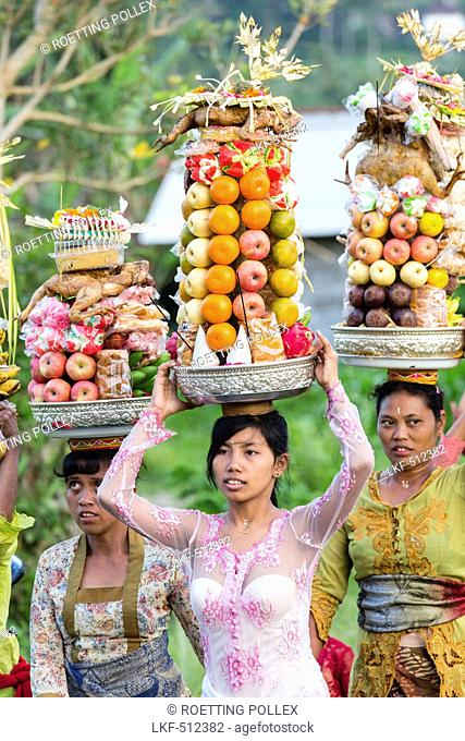 Women carrying offerings on their heads, Odalan temple festival, Iseh, Sidemen, Karangasem, Bali, Indonesia