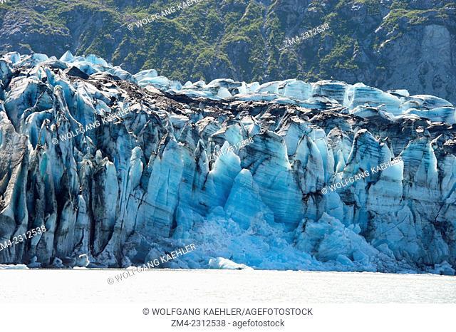 View of Lamplugh Glacier terminus in Johns Hopkins Inlet in Glacier Bay National Park, Southeast Alaska, USA