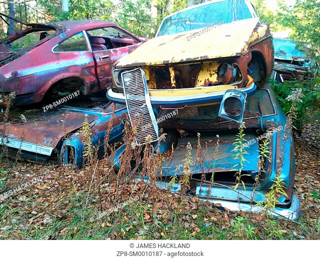 Four older rusted out cars stacked on top of each other found in an overgrown scrapyard in Ontario, Canada