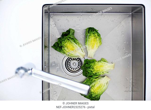 Vegetable in sink