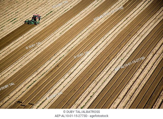 Aerial photograph of a tractor plowing a field in the northern Negev