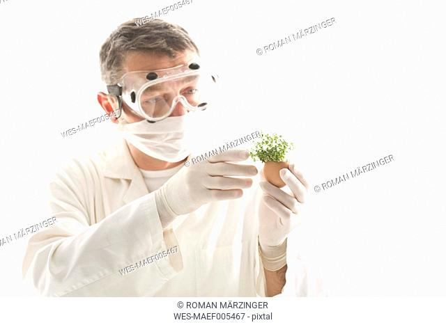 Scientist examining cress in egg shell, close up
