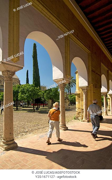 Cathedral, Old arab mosque - patio de los naranjos and tourists, Cordoba, Region of Andalusia, Spain, Europe