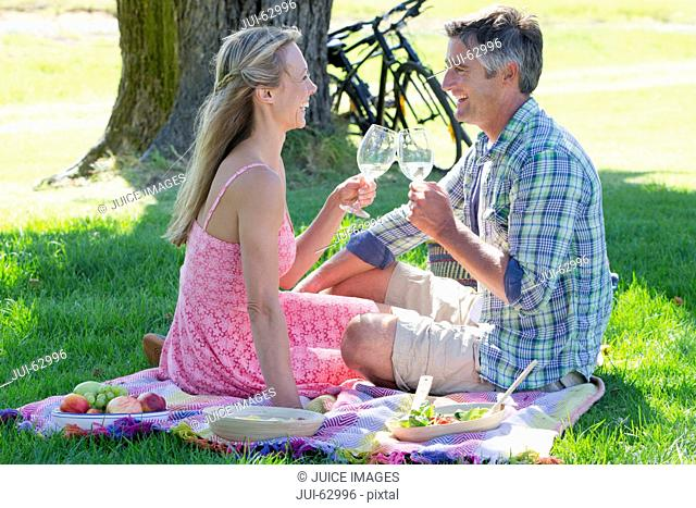 Couple drinking wine sitting on picnic blanket