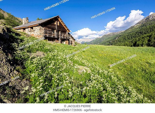 France, Hautes-Alpes, Névache, Clarée valley