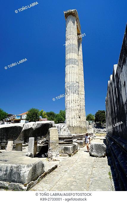Temple of Apollo. Didyma. Ancient Classic Greece. Asia Minor. Turkey