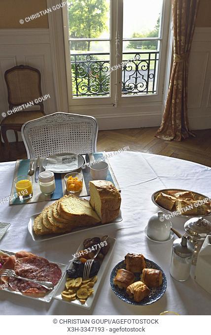 Chateau des Essards, Maison d'hotes a Langeais, departement Indre-et-Loire, region Centre-Val de Loire, France, Europe/Chateau des Essards