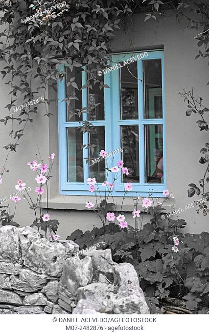 Irish window, The Burren, Co Clare, Ireland