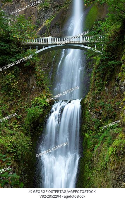 Multnomah Falls with Benson Bridge, Historic Columbia River Highway, Columbia River Gorge National Scenic Area, Oregon