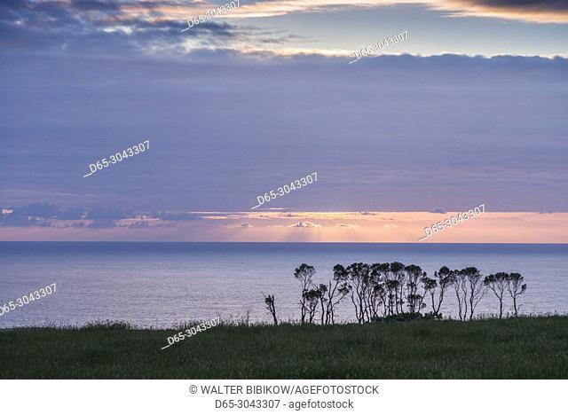 Portugal, Azores, Santa Maria Island, Anjos, place where Christopher Columbus made landfall after discovering the New World, trees and sky, sunset