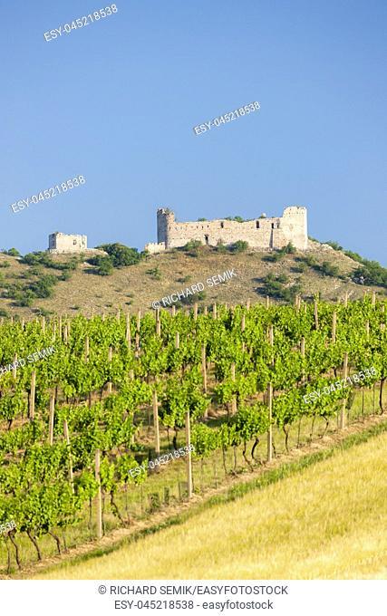 vineyards, castle Devicky, Palava, Moravia region, Czech Republic
