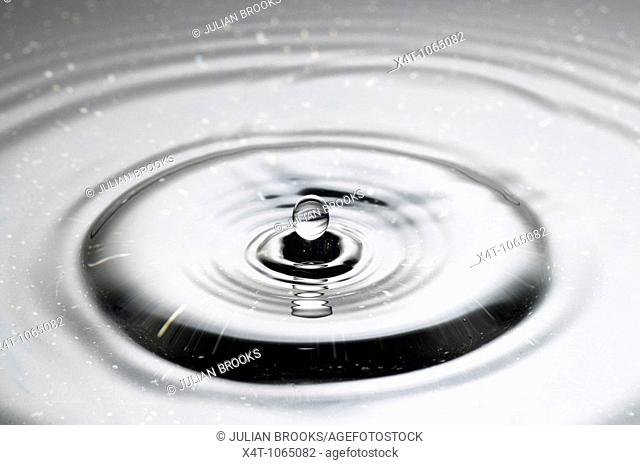 A droplet of water falling into a puddle and creating ripples