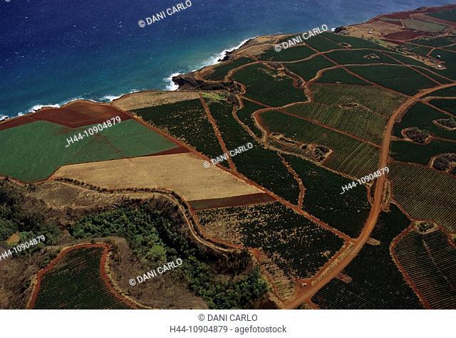 agriculture, fields, aerial view, Kauai, Island, Hawaii, USA, United States, America