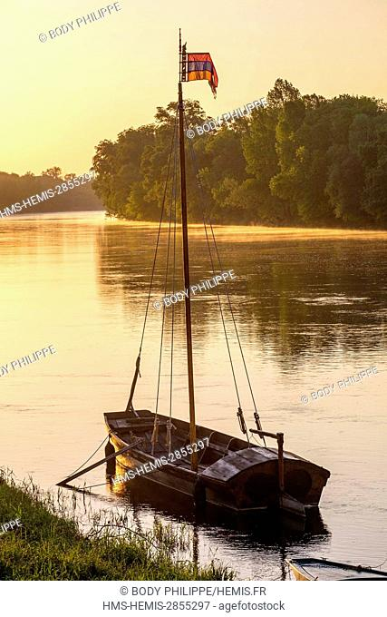 France, Indre et Loire, Loire Valley listed as World Heritage by UNESCO, Chouze sur Loire, traditional boats on Loire river
