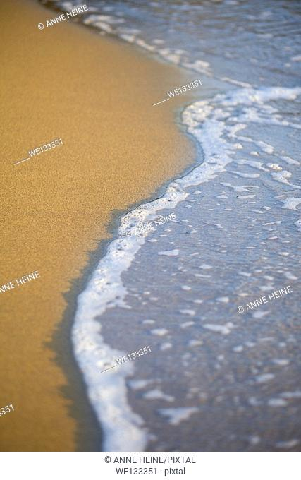 small wave rolling onto sandy beach, shallow dof