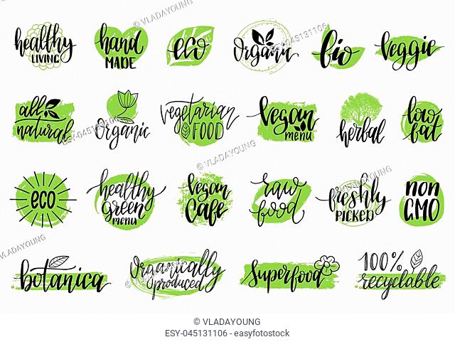 Vector eco, organic, bio logotypes or signs. Vegan, healthy food illustrations set for cafe, restaurant badges, tags, packaging etc