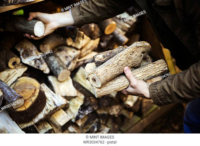 A man stacking logs, wood of different lengths. A firewood store