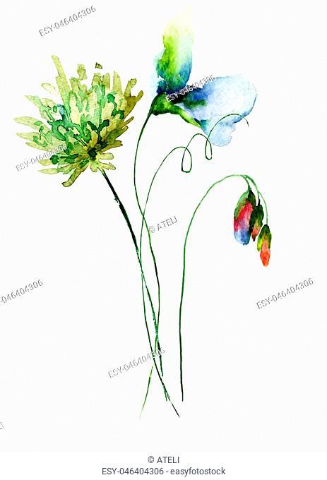 Decorative wild flowers,watercolourillustration
