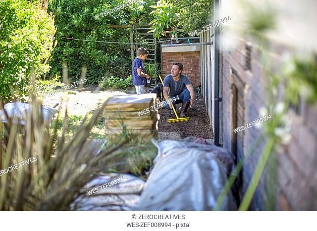 Father and son working together in garden