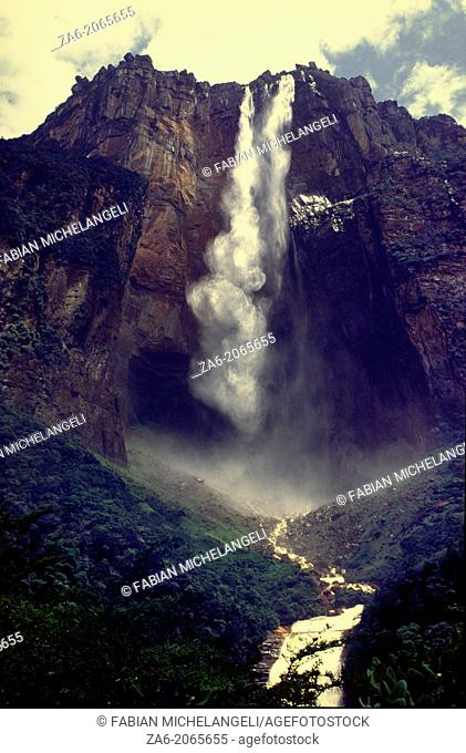 View from below of Angel Falls, the highest waterfall in the world leaping a 1000 meters from the summit of Auyantepuy. Canaima National Park, Bolivar State