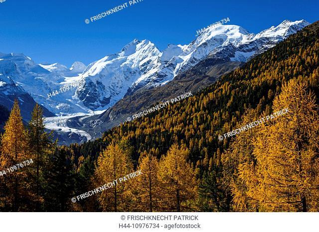Alps, Alpine, panorama, mountain, mountains, massif, Biancograt, ice, mountains, summit, peak, glacier, Graubünden, Grisons, autumn, colors, wood, cold, larch