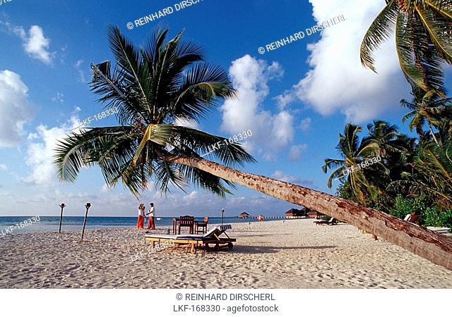 Beach on Maledivian Island, Maldives, Indian Ocean, Medhufushi, Meemu Atoll