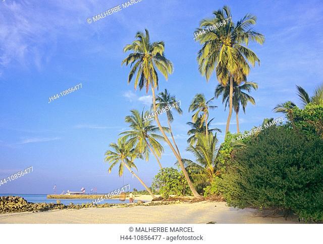 10856477, Maldives, Indian Ocean, South Ari Atoll