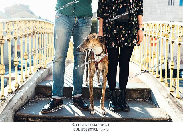 Waist down view of couple with dog standing on footbridge