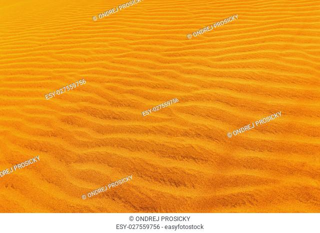 Detail of sand dune in desert