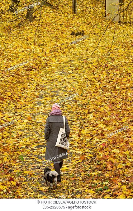 Autumn park. Krolikarnia Park. Warsaw. Poland