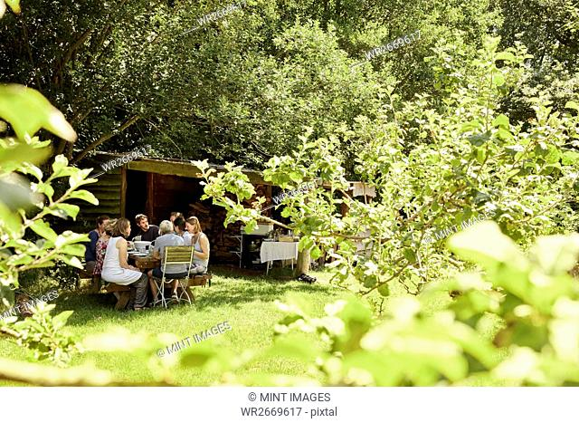 A group of people eating a meal outdoors in summer in the shade of trees in a garden