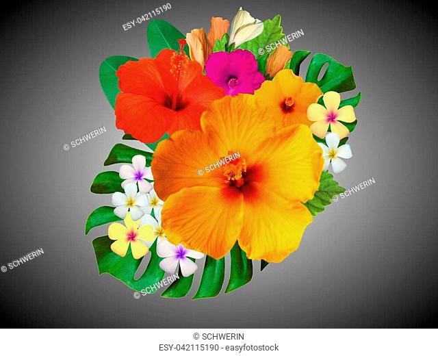 Flower Arrangement With Hibiscus Stock Photos And Images Age Fotostock