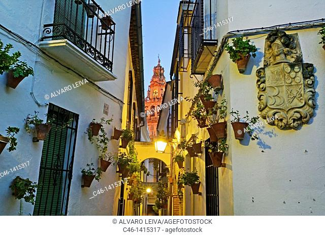 Street and Minaret tower of the Great Mosque, Córdoba  Andalusia, Spain