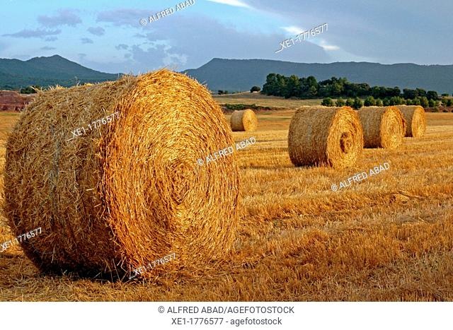 sunset, straw bales, Bages, Catalonia, Spain