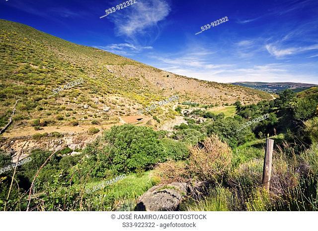 Garganta del Barbellido  Sierra de Gredos  Navacepeda del Tormes. Ávila, Spain