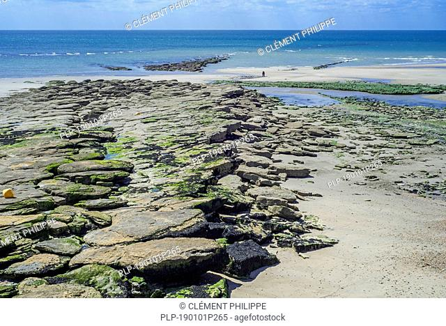 Jurassic rock layers exposed at low tide on the beach at Ambleteuse along rocky North Sea coast, Côte d'Opale / Opal Coast, France