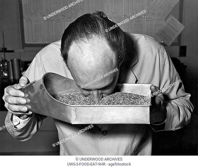 Baltimore, Maryland: February 27, 1964.A Department of Agriculture employee tests a batch of grain by checking its aroma