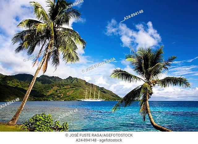 Sailing ship, Opunohu bay, Moorea, Society Islands, French Polynesia (May, 2009)