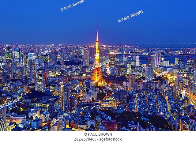 General city skyline evening view with the Tokyo Tower of Tokyo, Japan
