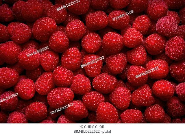 Pile of fresh red raspberries