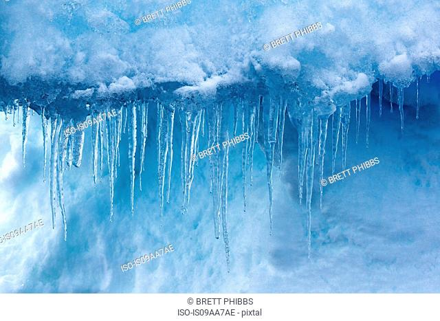 Detail of icicles, iceberg, ice floe in the southern ocean, 180 miles north of East Antarctica, Antarctica