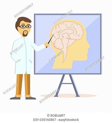 Doctor showing human brain flat design. Human head, human anatomy, medicine care, medical health human, hospital and professional specialist illustration