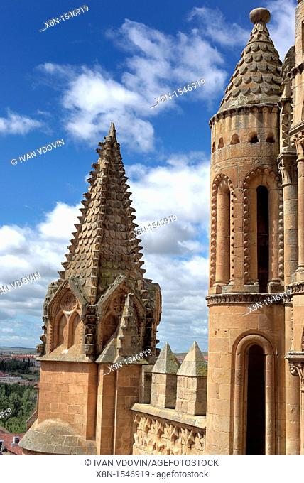 Old Cathedral Catedral Vieja de Santa Maria, Salamanca, Castile and Leon, Spain