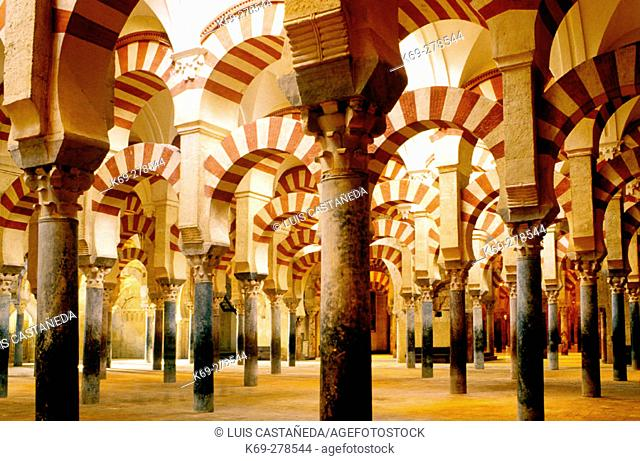 Abderramán Hall, interior of the Great Mosque in Córdoba. Andalusia. Spain